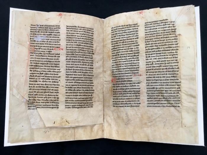 KSRL_MS_D40_folios_7v-8r